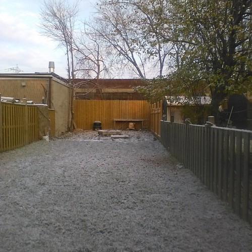 First snow, backyard #toronto #dupontstreet #snow #winter #dovercourtpark