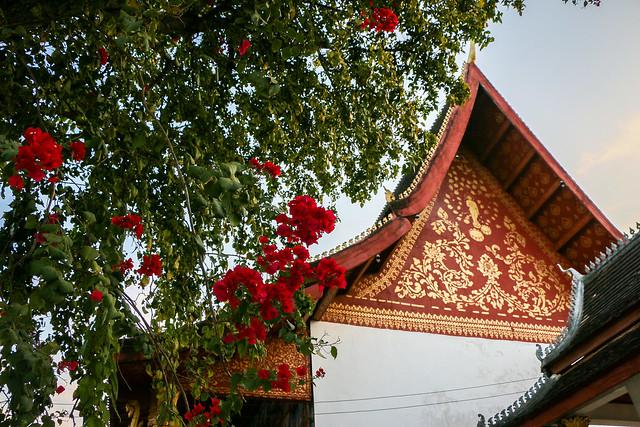 Temple and Bougainvillea in Wat Manorom, Luang Prabang,  Laos ルアンパバーン、ワット・マノーロムとブーゲンビリア