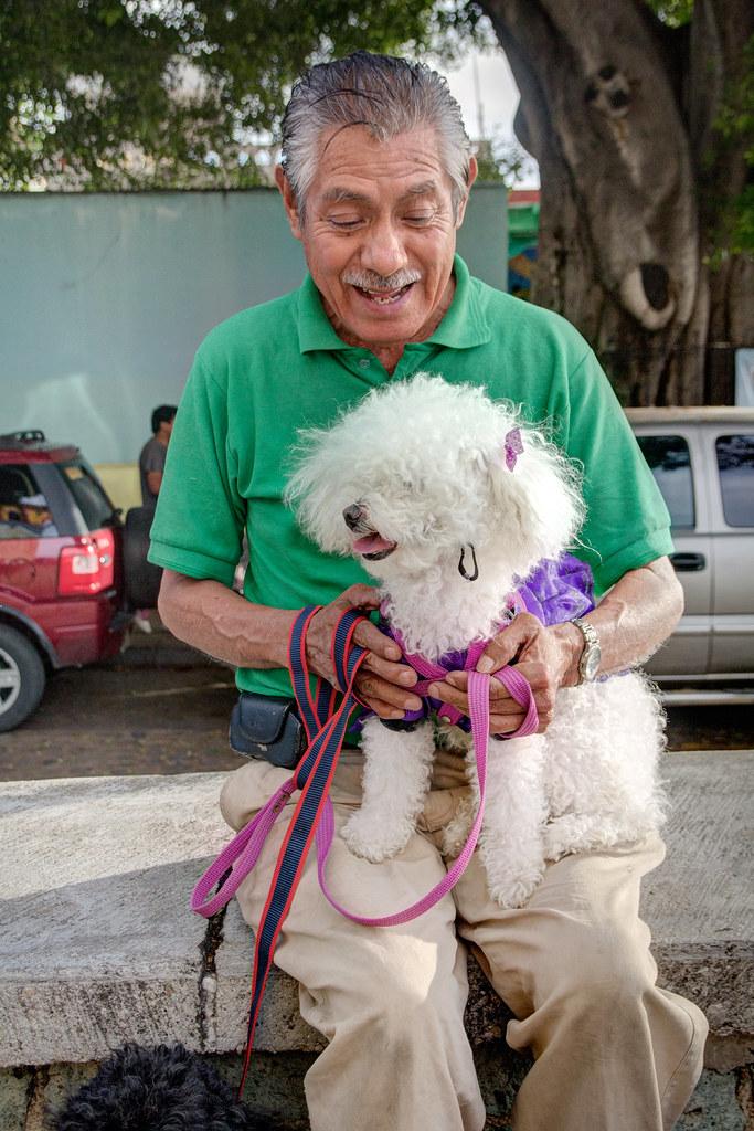Dog Lover, Jalatlaco