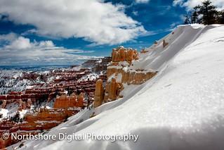 Fresh Snow at Bryce