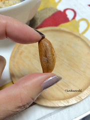 saijo persimmon seed, looks like kaki no tane arare