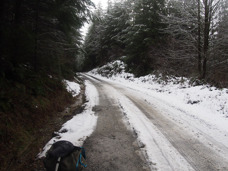 Turning Back: The snow was starting to get thicker on the hardpack, so I decided that turning back was prudent.