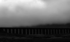 Fog fog stories