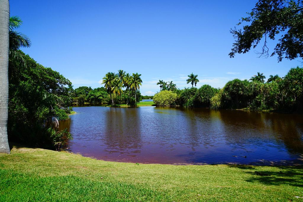 Jardim Botanico, Miami, Flórida