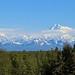 Denali, from Talkeetna Viewpoint by Will Stuart