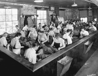 Tobacco workers sorting leaves - Tampa