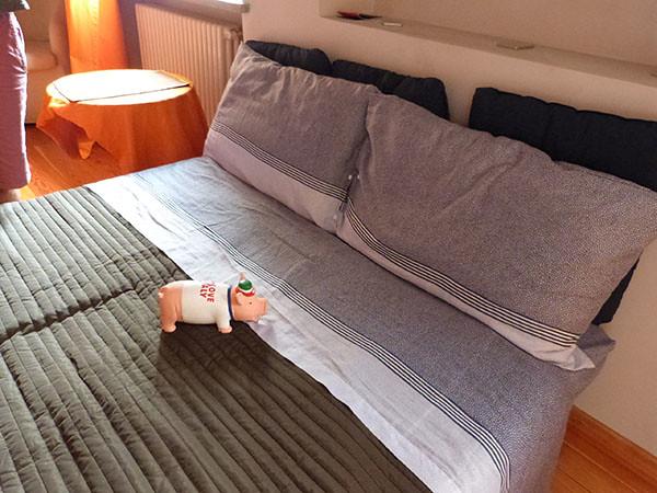 cochon sur le lit