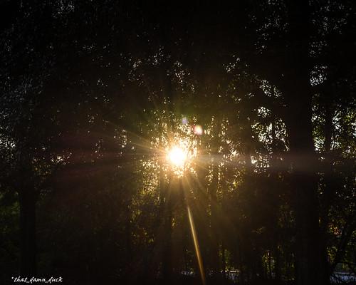 sc sunshine sunrise unitedstates southcarolina mornings sunrays naturephotography