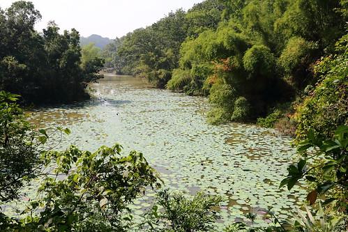 新化國家植物園