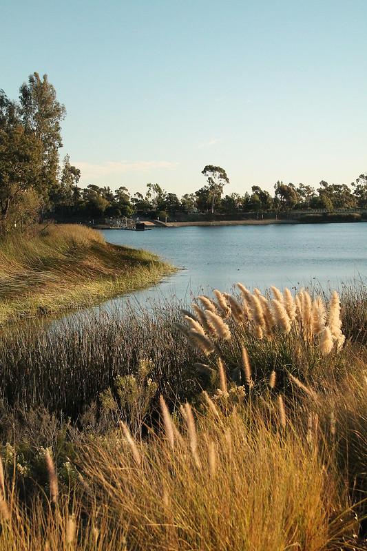 Miramar Lake