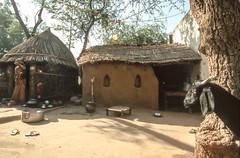 Rajasthan : Bhil tribe #1