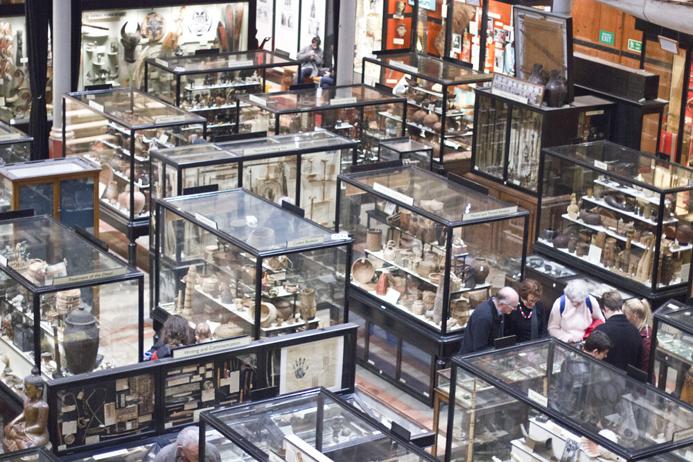 pitt rivers museum oxford anthropology history culture