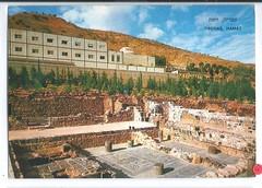 11740957174  Hamat Tiberias Israel Jewish Mosaic Floor