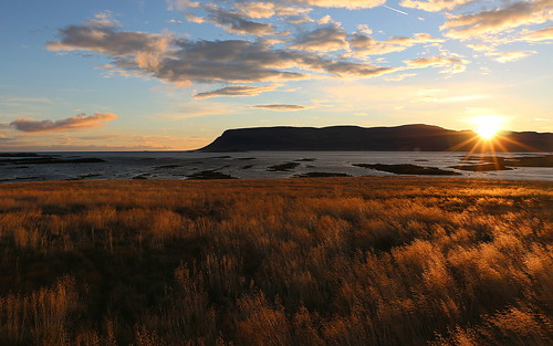 vatnsfjörður barðastrandarsýsla westfjords vestfirðir iceland september 2016 grass sun sunset clouds sky golden landscape sea dusk