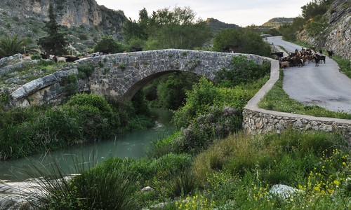 111. Puente romano Colomera.