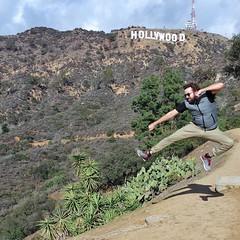 A última lagartixa branca - O filme. Logo em Hollywood!