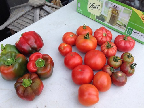 Hooray for tomatoes!