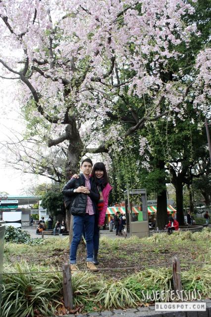japan tokyo trip ueno park 31