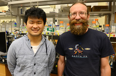 Wouter Hoff (right), OSU professor of microbiology and molecular genetics, with Shojiro Haraguchi, a graduate student from Saga University in Japan, who is working with Hoff to develop experiments involving a novel spectroscopic technique to measure structural changes to light-absorbing molecules. Hoff, Haraguchi and colleagues in Japan recently published a study confirming theories about the technique.