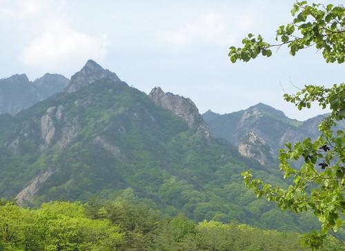 Co-Sokcho-Seoraksan-Entrée (3)