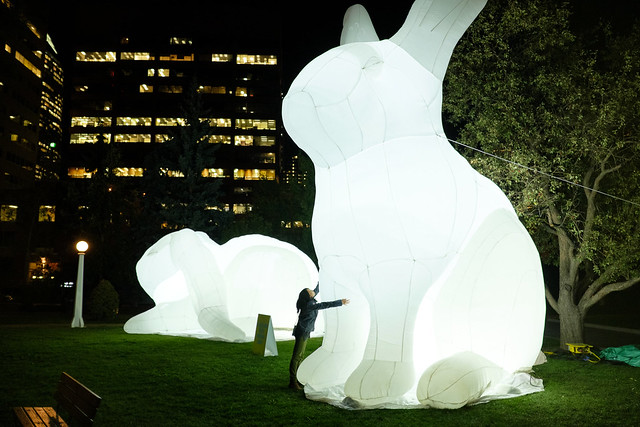 Beakerhead Intrude - White Rabbit-6