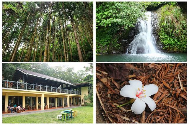 新竹-大山背生態之旅