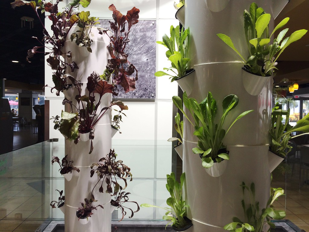 Hydroponic Veggies at the Orbit Cafe, Inspired by Space Technology - Kennedy Space Center Visitor Complex, Oct. 10, 2015