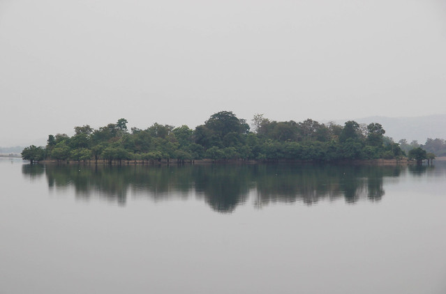 The Cheruvu houses few islands of green among its tranquil waters.