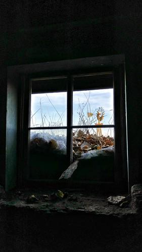 old usa house fall abandoned broken window glass windmill leaves southdakota dark eyes decay winner tripp past celler