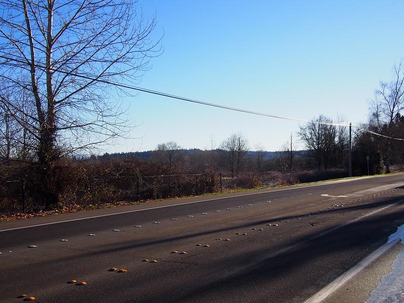 W Lake Sammamish Parkway