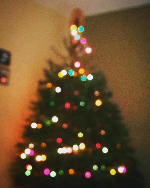 Oh Christmas tree! 🎄