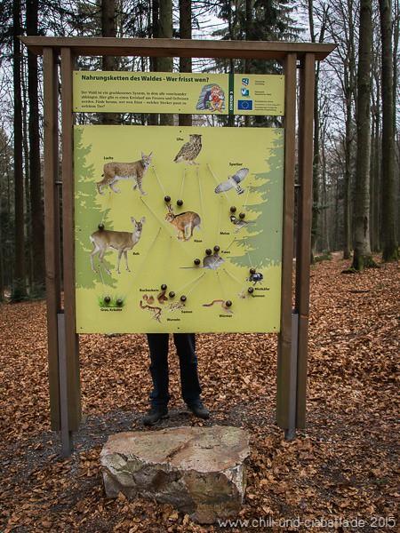 Sonnenwald-Erlebnispfad am Brotjacklriegel