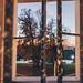 Window portrait by viteo