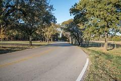 East Jeter Road - November 2016