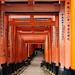 Japan16_Kyoto_1140 by Chealse V