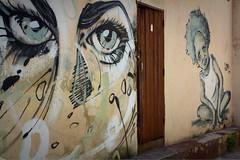 Street art - La Habana - Cuba