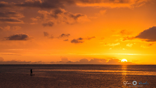 travel sunset summer sun seascape clouds sunrise polynesia nikon pics picture tahiti couchédesoleil frenchpolynesia polynésie sylvainbernardin