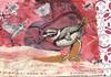 air mail bird postcard