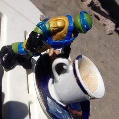 Turtle coffe break! #tmnt #coffe #coffebreak #leo #sea