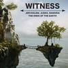 068 Witness Green Arrows