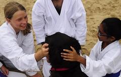 aikido, contact sport, sports, combat sport, martial arts, japanese martial arts,