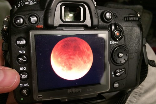 Blood Moon on the back of a Nikon