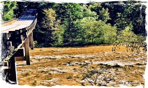 bridge water river landscape woods