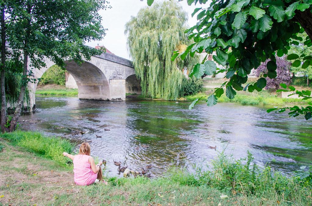 Balade gastronomique dans l'Yonne - Faire ami-ami avec les canards