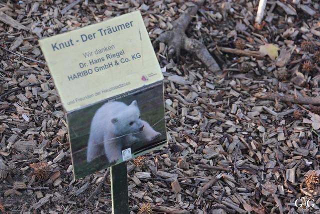 Besuch im Berliner Zoo 06.12.201512