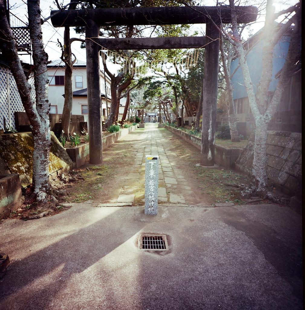 銚子市 Choshi, Japan / Kodak Pro Ektar / Lomo LC-A 120 我記得這裡走進去遇到兩隻貓,也是悠閒的在午後打呼。只是準備要拍的時候,其中一隻驚醒!  可以把光線拍起來,這卷底片真的很棒!應該提列一筆預算來蒐集這卷底片。  Lomo LC-A 120  Kodak Pro Ektar 100 120mm  8281-0009 2016-02-05 Photo by Toomore