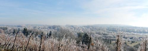Winter-Panorama-Eisblüte