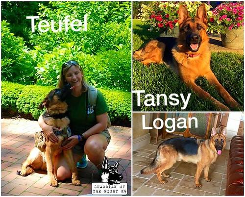 Tuefel, Tansy, Logan_1 yr_Aug 17, 2015