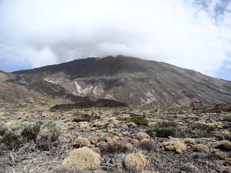 PN. Cañadas del Teide 20678231168_0bfcdbd0a6_c