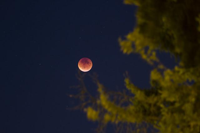 red moon isaac - photo #40